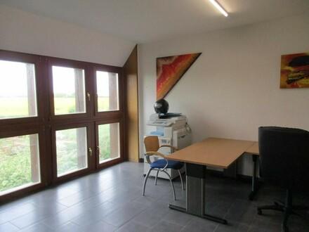 Büro mit Blick ins Grüne