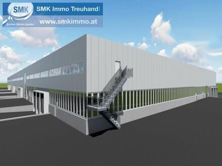 Komplett neu gebaute Hallen im Business-Park Korneuburg!
