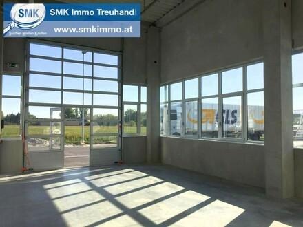 Komplett neu gebaute Hallen im Business Park Korneuburg!