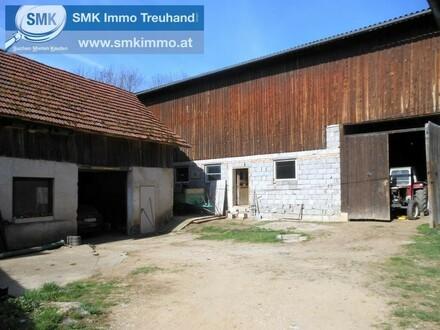 Wie es früher so war! Bauernhaus mit Stall, ca. 12 ha Grünland und Wald!