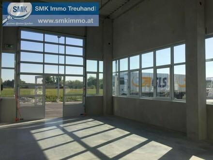 Komplett neu gebaute Halle im Business Park Korneuburg!