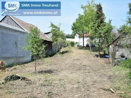 Bauplatz mit Altbaumbestand!