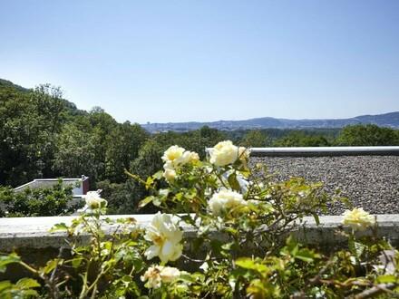 Traumhafte Terrassenwohnung in Plesching