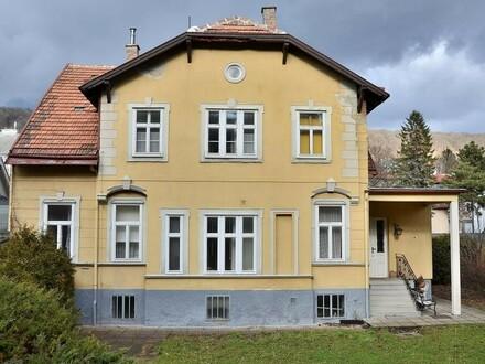 Jahrhundertwende - Villa in Salmannsdorf