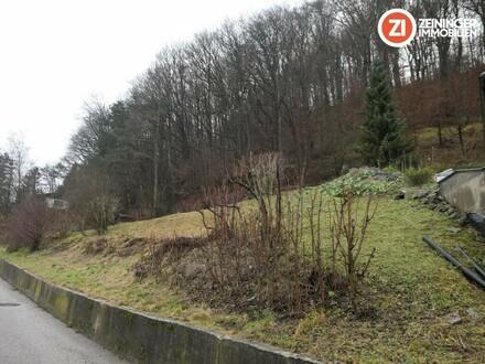 Rarität: Grundstück mit Blick ins Donautal