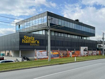 Modernste Büroflächen nahe Plus City - Flächen flexibel gestaltbar!