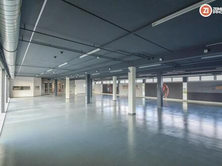 600m² offene lichtdurchflutete Bürofläche - mit Terrasse