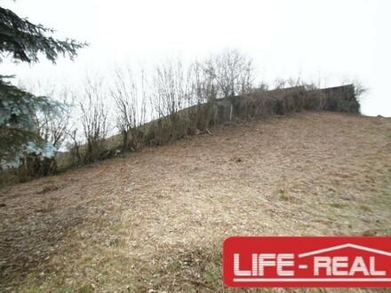 sonniges Grundstück mit herrlicher Fernsicht bis zum Schoberstein und Ennstal