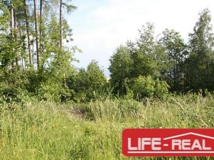 ruhiges, sonniges Grundstück mit Linzblick
