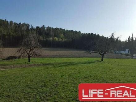 sehr schönes Grundstück in einer ruhigen Lage mit Blick auf dem Wörthersee