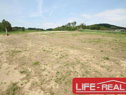 """LICHTENBERG, stadtnah, naturnah Grundstück in ruhiger Lage mit Linzblick """"Hier lässt sichs Leben"""""""