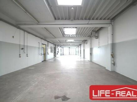 schönes Gewerbeobjekt mit zwei Hallen und einem Büro sowie einer Betriebswohnung