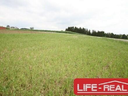 """LICHTENBERG, stadtnah, naturnah Grundstück in ruhiger Lage mit Fernblick """"Hier lässt sichs Leben"""""""