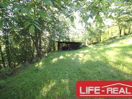 schönes, großes Grundstück in Niederwaldkirchen, KEIN BAUGRUND