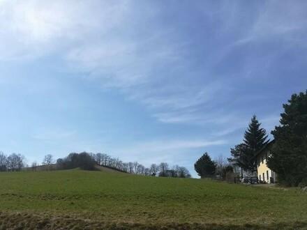 1000m2 sonniger, westseitiger Baugrund, 38 Meter Strassenfront / Sittendorf /Sulz im Wienerwald