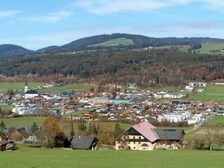 Thalgau-Panoramabild