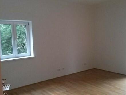Traumhaft schöne 2-Zimmer-Wohnung mit Carport, super Lage Riedenburg