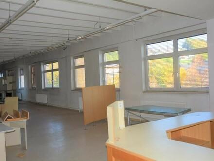 Grenze Stadt Salzburg: Günstige 370 m2 Bürofläche in Bergheim