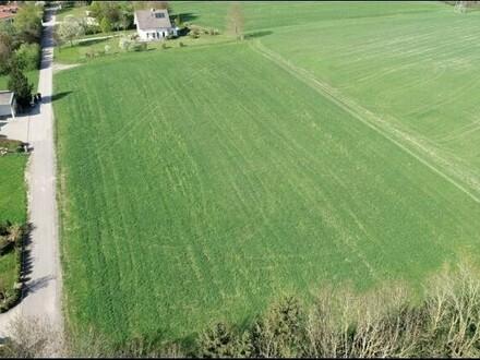 Grundstück in ruhiger Traumlage - 6.000 m²