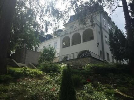 Hochwertiges Büro im Schloss Neuwaldegg