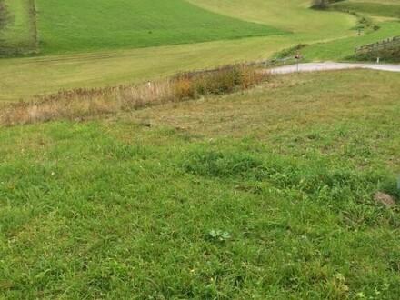 Baugrund in Illmitzen, Unternberg günstig abzugeben