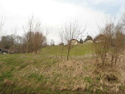 Grünland - für Gartenhäuschen, Hühner, Hasen und Bienen und vieles mehr .....