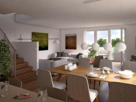 Modernes Doppelhaus