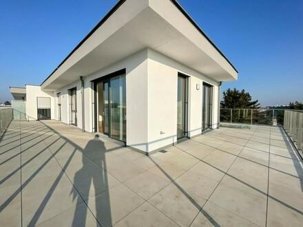 Traumwohnung mit herrlicher Terrasse - Provisionsfrei f. Käufer // Dream apartment with gorgeous terrace
