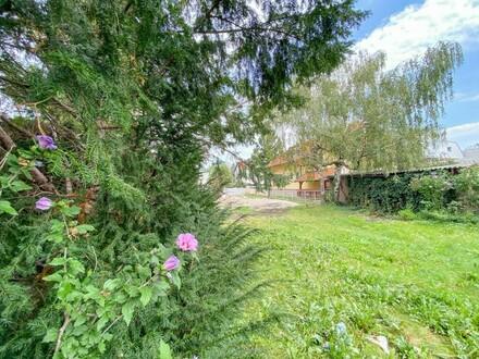 Wohntraum mitten im Grünen - nahe U6 Neue Donau - Provisionsfrei f. Käufer // Living dream into the greenery- near U6 New…