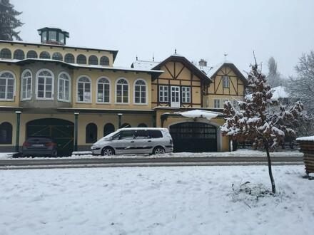 Historisches Anwesen mit Palmenhaus und Tiefgarage