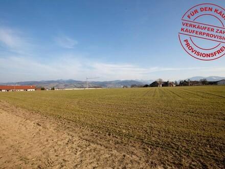 Betriebsbaugrund in Wartberg zu kaufen