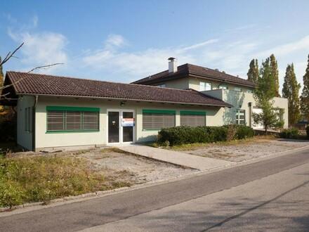 Ausstellung und Büro in Thalheim zu mieten