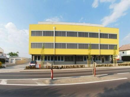 OfficeCenter-Sattledt: Büro Top 4 mit rund 132 m² - Passend für viele Ansprüche