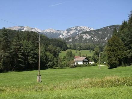Baugrund mit Grünland