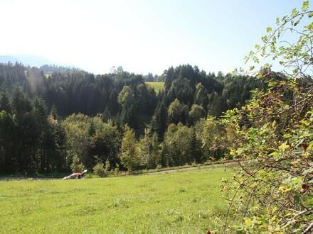 Ansicht Richtung Kleinerberg