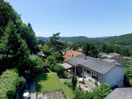 Garten von oben mit Wiernerwaldblick