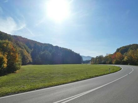 Ebenes Bauträger-Grundstück in Laaben bei Neulengbach