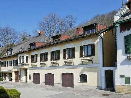 Ehemaliges Winzerhaus mit Gewölbe-Weinkeller am Fuße des Bisamberges