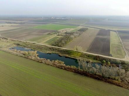 Teich Richtung Nordosten