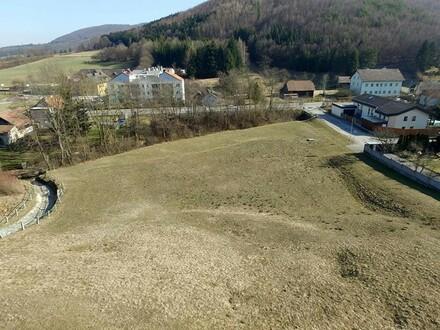 Sonniges Baugrundstück in Siedlungslage