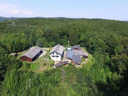 RARITÄT! - Landwirtschaft mit Wohnhaus und privater Schutzhütte auf Waldlichtung in Wiennähe!