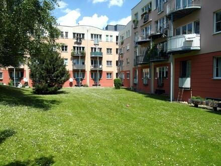 Gemeinschaftsgarten Richtung Wohnung