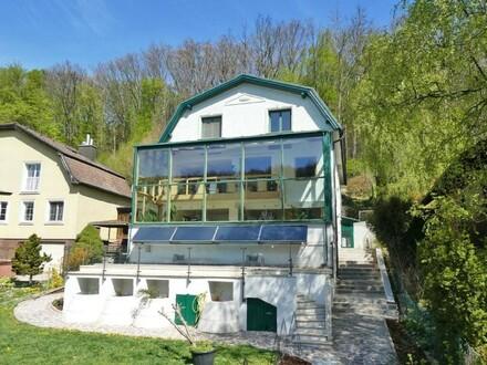 Einfamilienhaus in Südlage mit Pool und Waldanteil