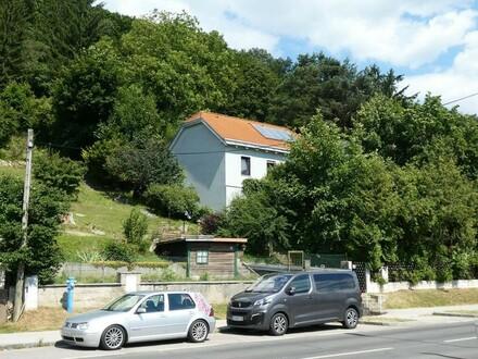 Bastlerhit auf Südwesthang in Purkersdorf