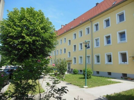 Sanierte 2 Raum Wohnung in Stadtrandlage Steyr Münichholz