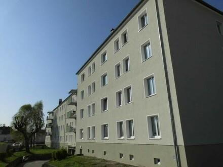 Preiswerte Ruheoase - generalsaniertes Objekt - im grünen Herzen von Wels - naturnahe 2-Raum-Wohnung mit optimaler Infrasturktur…