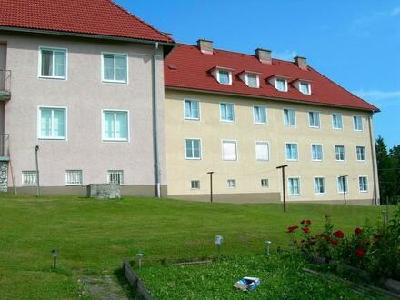 Idyllisches Wohnen im Grünen! Leistbare 2-Zimmer Wohnung in ruhiger Umgebung - zentrumsnah, provisionsfrei!