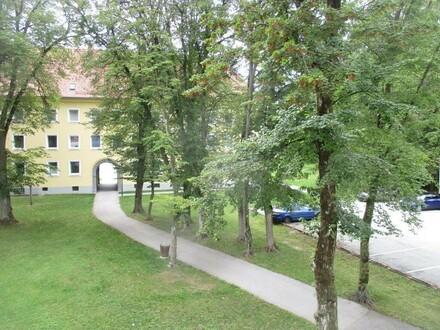 Sanierte 3 Raum Wohnung, wohnen wo Man(n) / Frau arbeitet, Stadtteil Steyr Münichholz, provisionsfrei!