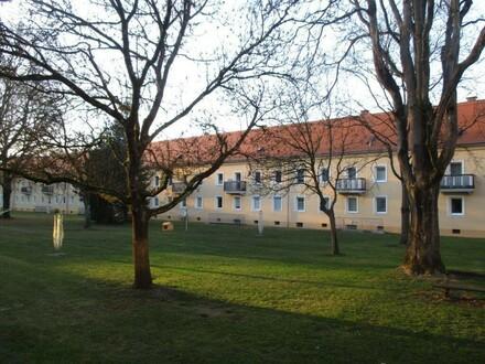 NEU SANIERTE leistbare 4 Raum Wohnung im Erdgeschoß, mitten im nachgefragten Stadtteil Steyr Münichholz - Prov.frei.