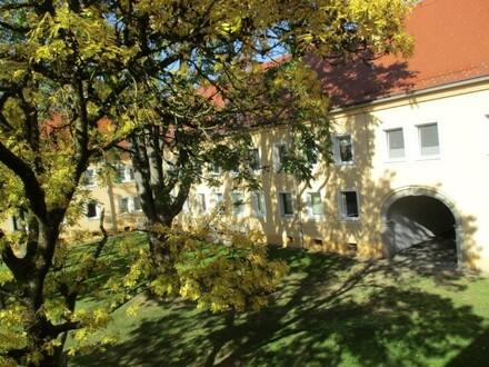3 Raum Wohnung in Stadtrandlage, Stadtteil Steyr Münichholz